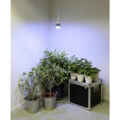 Lampadina per piante 136 mm 230 V E27 18 W Bianco neutro Riflettore 1 pz.