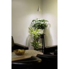 Lampadina per piante 89.5 mm 230 V E27 6 W Bianco neutro Riflettore 1 pz.