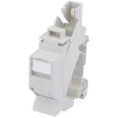 TS45 AMJ-S Adattatore per guida DIN Guida DIN Non classificata Grigio luminescente