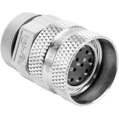 Ottone Micro ingranaggio Modulo 0.3 Ingranaggi elicoidali 1 pz.