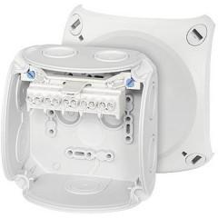 Cavo adattatore per radio ISO Adatto per (marca auto): Universal