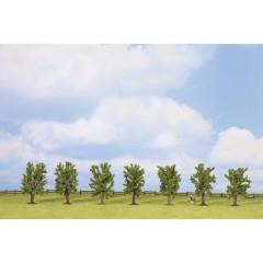 Kit alberi bosco di latifoglie 80 fino a 80 mm Verde 7 pz.