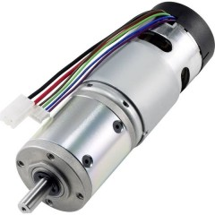 IG420504-SY5513 Motoriduttore DC 12 V 5500 mA 2.94199 Nm 13.5 giri/min Diametro albero: 8 mm