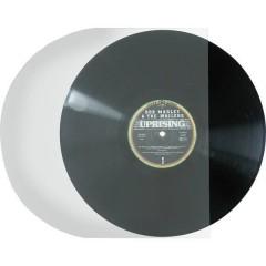 Copertina per dischi 100 pz.