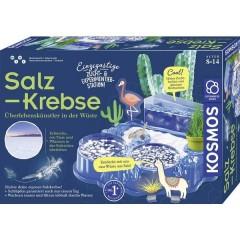 Salzkrebse Biologia Kit per esperimenti da 8 anni