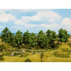 Kit alberi bosco di latifoglie 140 fino a 180 mm 6 pz.