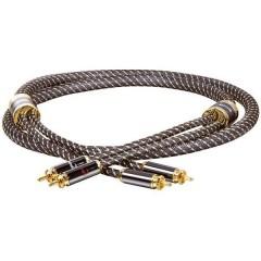 Black Line Audio Cavo di collegamento [2x Spina RCA - 2x Spina RCA] 1.00 m Oro, Nero