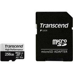 330S Scheda microSDXC 256 GB Class 10, UHS-I, UHS-Class 3, v30 Video Speed Class Standard prestazioni A2,
