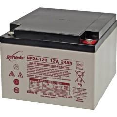 Genesis Batteria al piombo 12 V 24 Ah Piombo-AGM (L x A x P) 166 x 125 x 175 mm Vite M5 Esente da