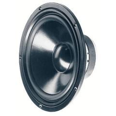 W 250 S 10 pollici 25.4 cm Toni bassi 30-2500Hz 100 W 8 Ω