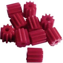 Pignone per esperimenti didattici Tipo di modulo 0.5 Ø foro 1.9 mm Numero di denti 10