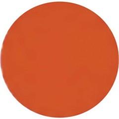 Vernice Lexan policarbonato rosso fluo Barattolo 150 ml