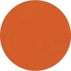Vernice Lexan policarbonato rosso chiaro fluo Barattolo 150 ml