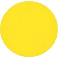 Vernice Lexan policarbonato giallo fluo Barattolo 150 ml