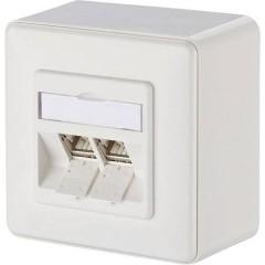 Presa di rete Da parete CAT 6A 2 Porte Bianco puro