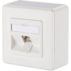Presa di rete Da parete CAT 6A 1 Porta Bianco puro