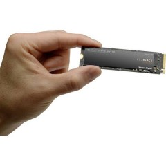 Black™ SN750 250 GB SSD interno NVMe/PCIe M.2 M.2 NVMe PCIe 3.0 x4 Dettaglio S250G3X0C-00SJG0