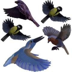 Stickers Native Birds Vetrofanie uccelli Principio di funzionamento Dissuasore 1 pz.