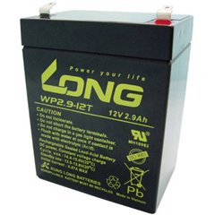 Long Batteria al piombo 12 V 2.9 Ah Piombo-AGM (L x A x P) 79 x 107 x 56 mm Spina piatta 4,8 mm Bassa